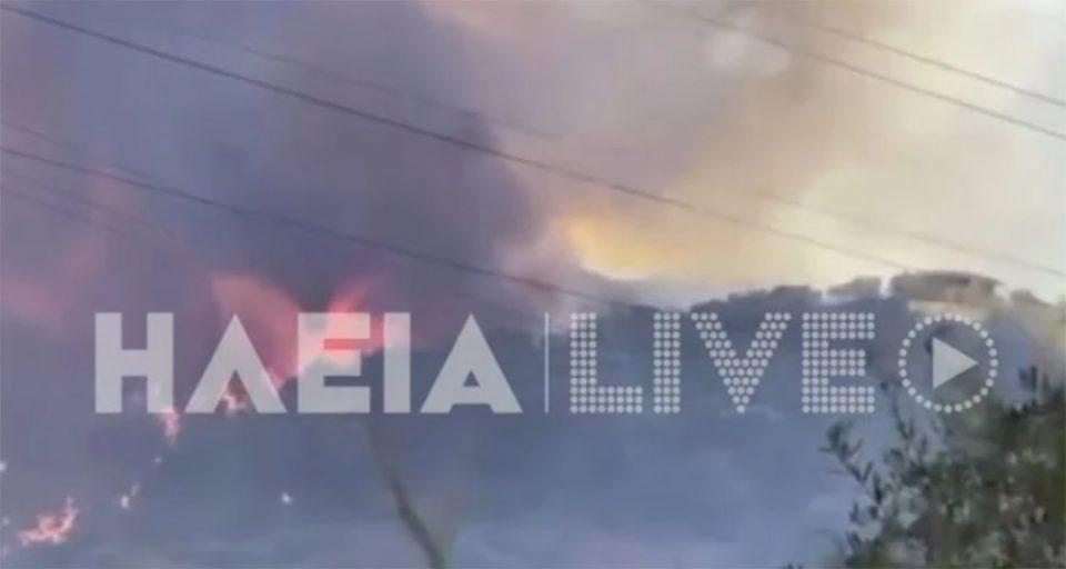 Ανεξέλεγκτη η φωτιά στην Αχαΐα: Κάηκαν σπίτια - Εκκενώνεται οικισμός
