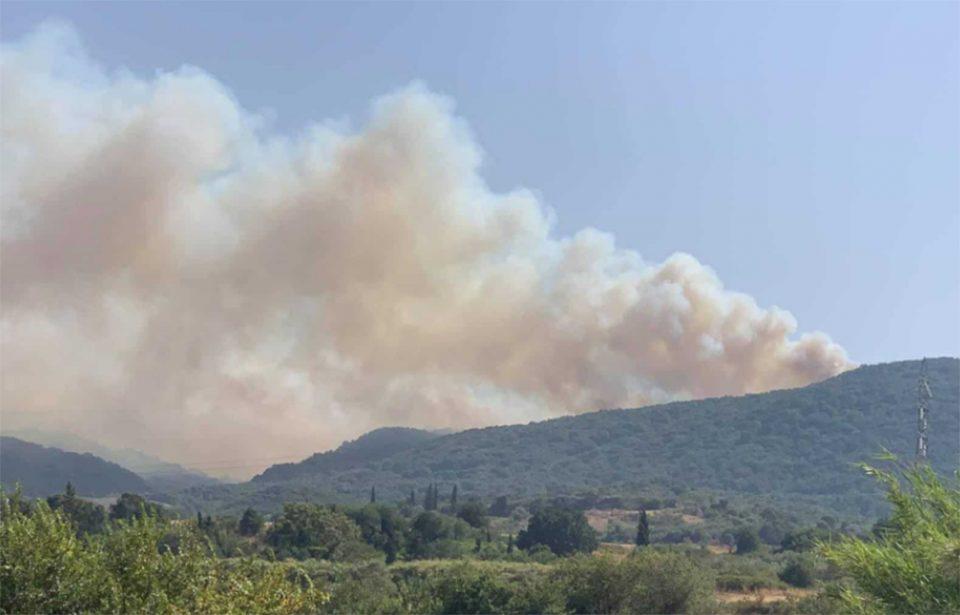 Αγρίνιο: Φωτιά στην περιοχή Θυρίου της Αιτωλοακαρνανίας