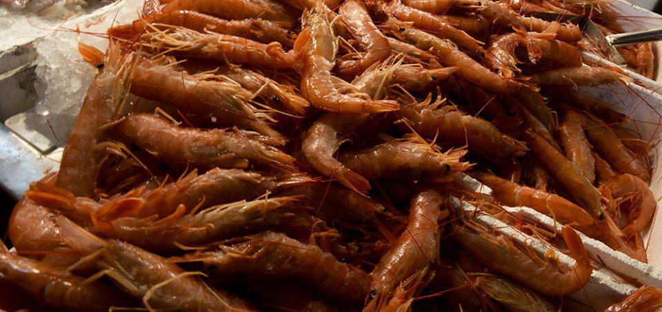 Προσοχή: Ο ΕΦΕΤ ανακαλεί κατεψυγμένες γαρίδες