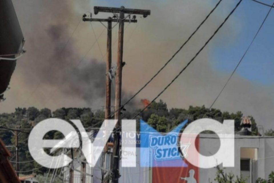 Εύβοια: Διακοπή ρεύματος στη Λίμνη – Καταστράφηκαν κολώνες της ΔΕΗ από τη φωτιά