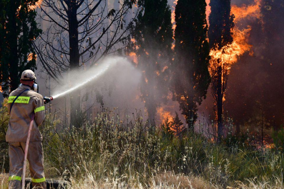 Φωτιά στην Αχαΐα: Ολονύχτια μάχη με τις φλόγες - Φόβοι για αναζωπυρώσεις