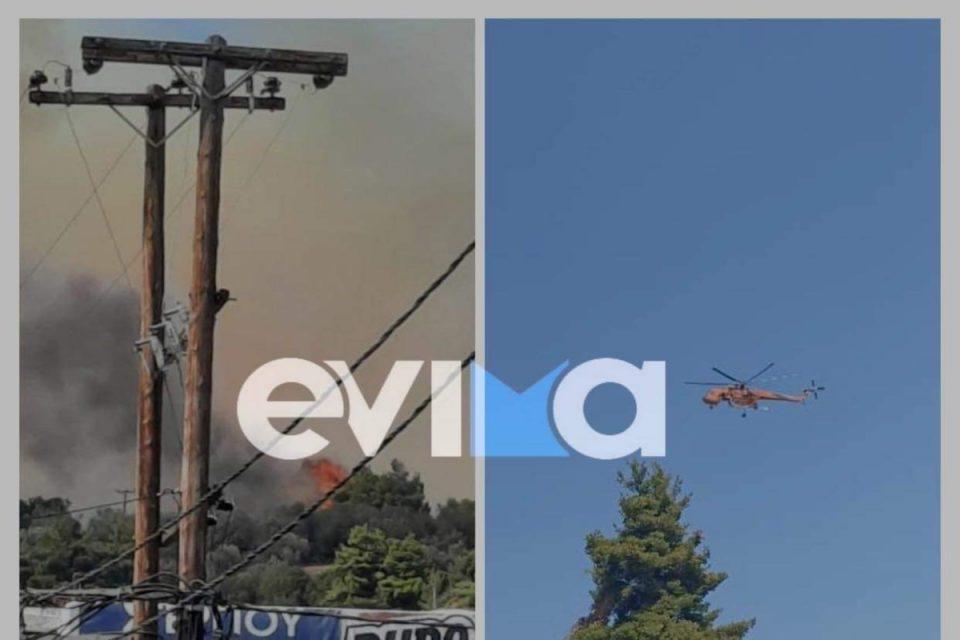 LIVE: Φωτιά σε Εύβοια και Επίδαυρο – Κινδυνεύουν σπίτια, κραυγή αγωνίας από τον δήμαρχο Μαντουδίου