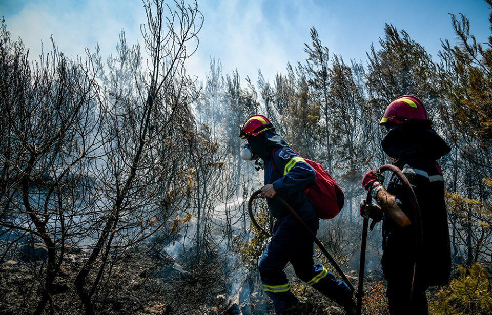 Μεσσηνία: Καλύτερη εικόνα παρουσιάζουν οι φωτιές σε Βασιλίτσι