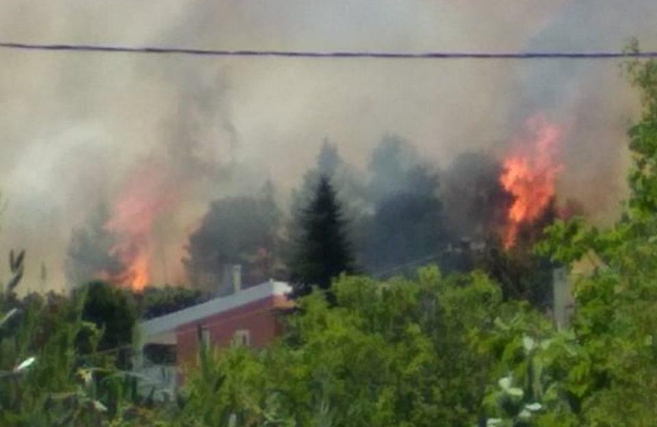 Μεγάλη φωτιά κοντά σε σπίτια στη Σταμάτα [εικόνες & βίντεο]