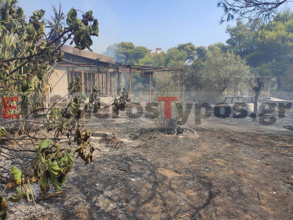 Φωτιά στο Κρυονέρι: Καίγονται σπίτια κοντά στην κεντρική πλατεία