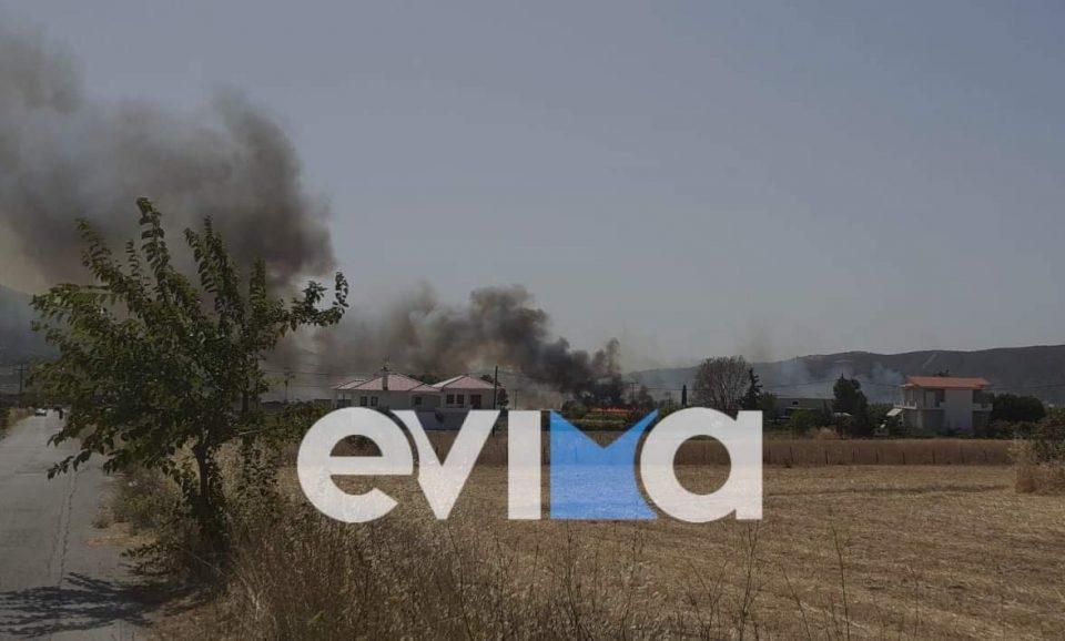 ΤΩΡΑ: Συναγερμός στην Εύβοια – Μεγάλη φωτιά στα Κριεζά