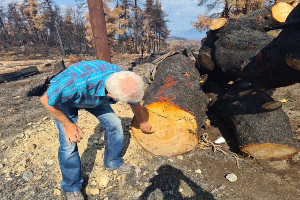 Φωτιές: Ξεκίνησαν τα αντιπλημμυρικά σε Εύβοια και Βαρυμπόμπη - Προχωρά η υλοτομία για καθαρισμό των καμένων