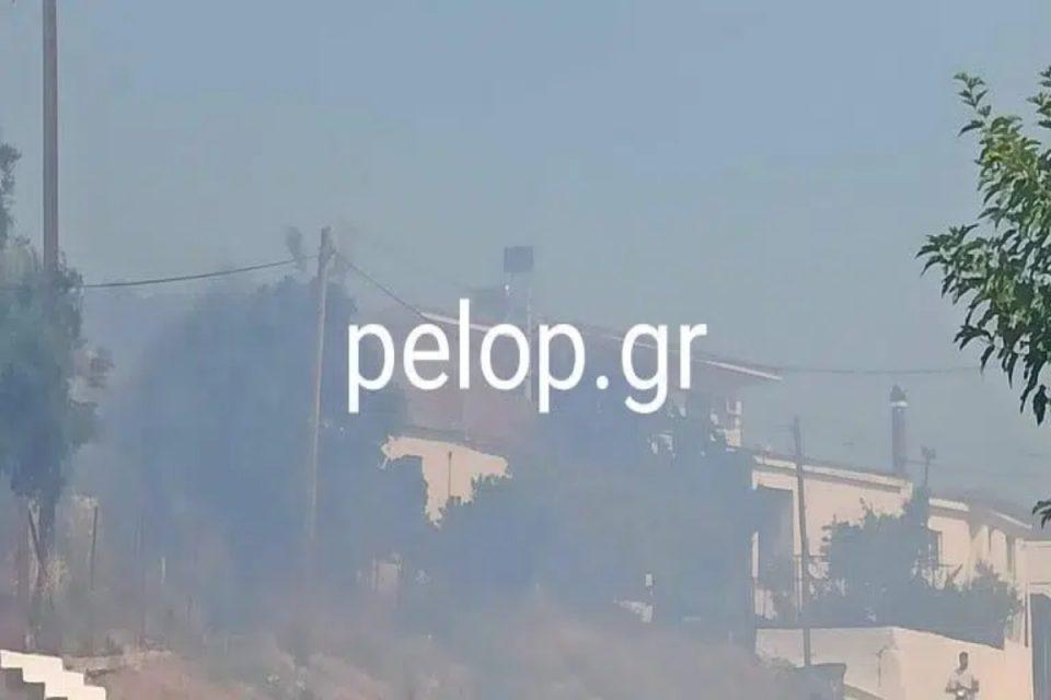 Φωτιά στην Αχαΐα: Συναγερμός στο χωριό Άρλα – Κοντά στο σχολείο οι φλόγες