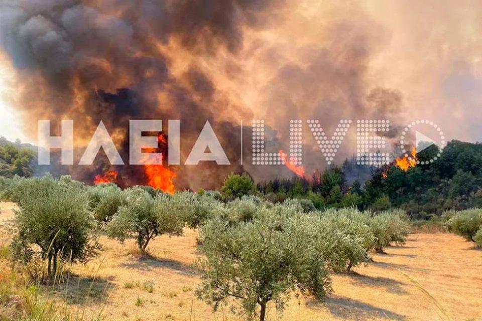 Φωτιά στην Ηλεία: Μάχη με τις αναζωπυρώσεις σε Βίλλια και Δούκας
