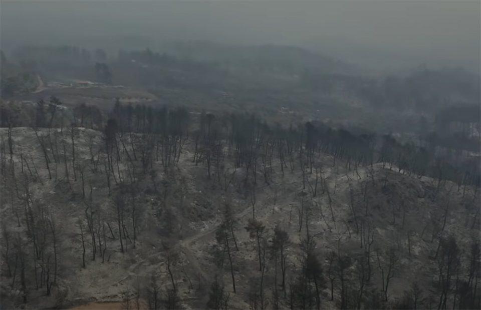 Φωτιά στην Εύβοια: Εικόνες καταστροφής - Drone κατέγραψε τον όλεθρο