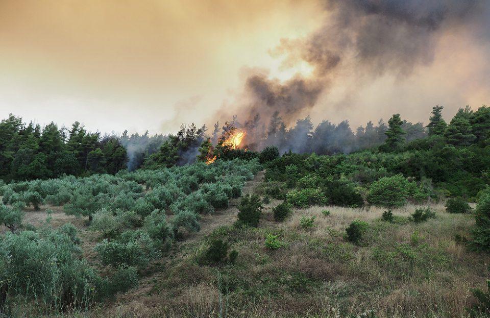 Μαίνονται τα πύρινα μέτωπα στην Εύβοια - Μάχη με τις φλόγες