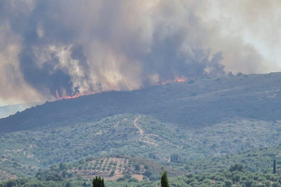 Μεσσηνία: Φουντώνουν οι φλόγες- Εκκενώθηκε ο οικισμός Βασιλίτσι