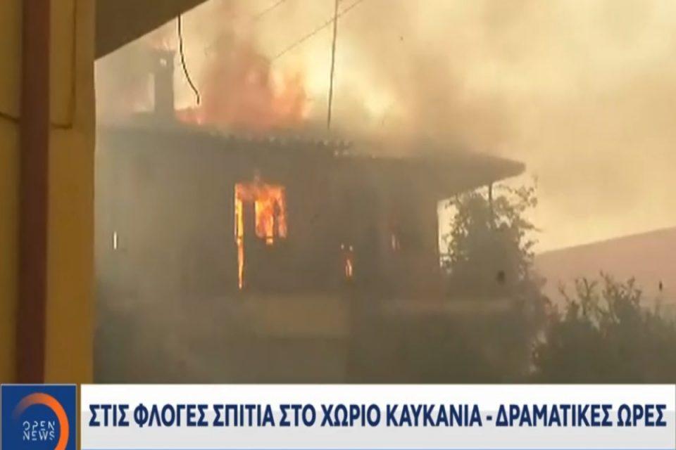 Φωτιά στην Ηλεία: Δραματική έκκληση δημοσιογράφου σε κατοίκους - «Ελάτε έξω, φύγετε από 'κει.» [βίντεο]
