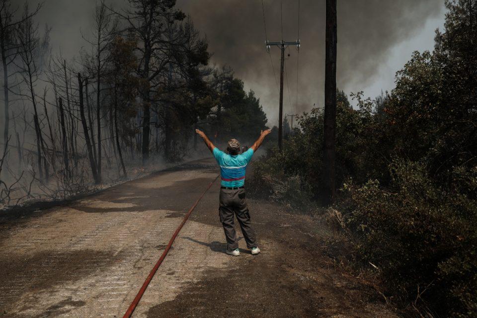 Φωτιά στην Εύβοια: Η ΔΕΗ αναλαμβάνει την αποκατάσταση και την αναδάσωση στην περιοχή