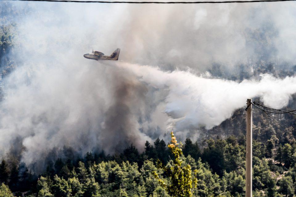 Φωτιά στην Ηλεία: Καίγονται χωράφια στο Μαρκόπουλο Τραγανού – «Σηκώθηκαν» τα Canadair