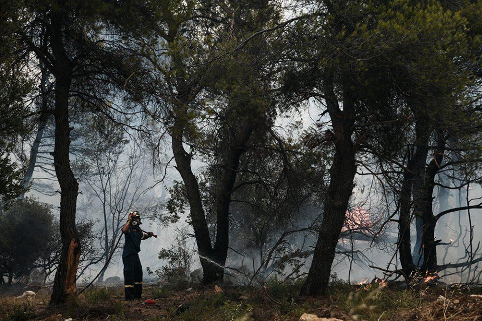 Φωτιά στην Αρκαδία: Εντολή εκκένωσης για 12 οικισμούς