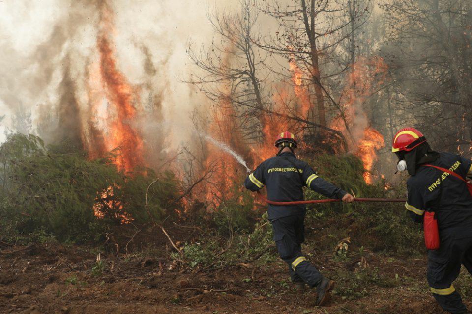 Πυρκαγιές: Οι τρεις άξονες για καλύτερη διαχείριση και η αντιπυρική θωράκιση