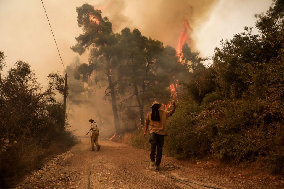 Φωτιά στην Εύβοια: Τιτάνια μάχη με τις αναζωπυρώσεις – «Στοίχημα» οι Καματριάδες, αγωνία για Αιδηψό και Ιστιαία