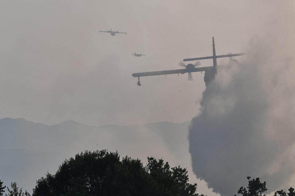 Φωτιά: Σε επιφυλακή οι πυροσβεστικές δυνάμεις στη Γορτυνία
