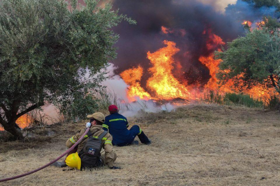 Φωτιά στην Ηλεία: Απέλπιδα κραυγή από κάτοικο στο χωριό Κλάδεος – «Υπάρχουν εγκλωβισμένοι στο χωριό μας»