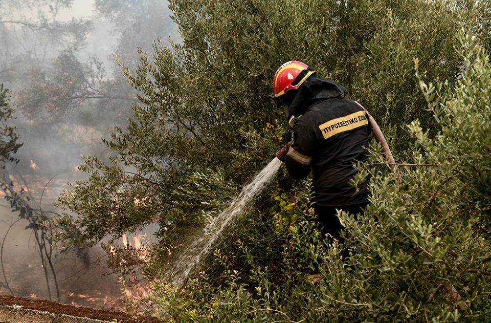 Εύβοια: Νέα φωτιά στα Μεσοχώρια Καρύστου – Ισχυροί άνεμοι