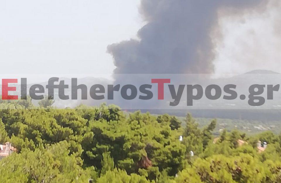 Φωτιά στη Βαρυμπόμπη: Σε εξέλιξη το πύρινο μέτωπο