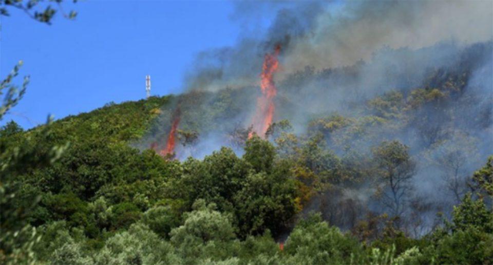 Φωτιά στη Σπάρτη: Δύσκολη η κατάσταση - Ενισχύθηκαν οι δυνάμεις