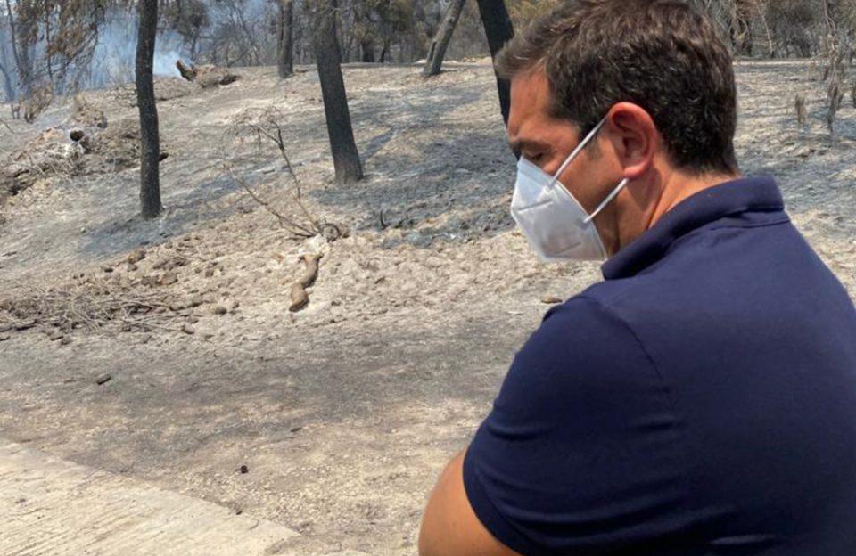 Οι πυρκαγιές «έκαψαν» και τον ΣΥΡΙΖΑ
