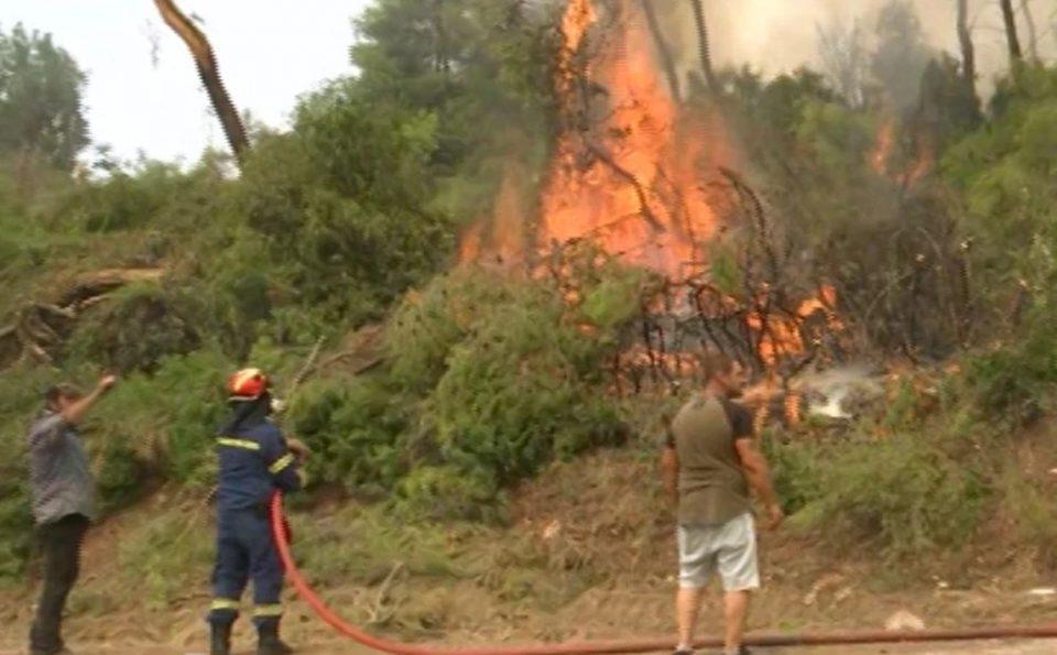 Φωτιά στην Εύβοια: Μεγάλη αναζωπύρωση στη Σκεπαστή - Σε πύρινη «πολιορκία» η περιοχή