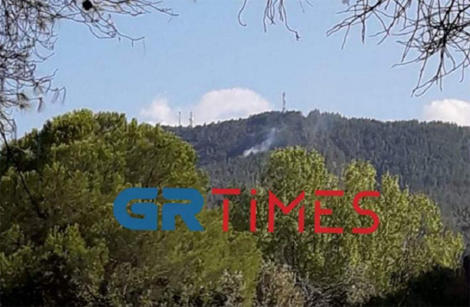 Φωτιά σε δασική έκταση στη Βουρβουρού Χαλκιδικής [βίντεο]