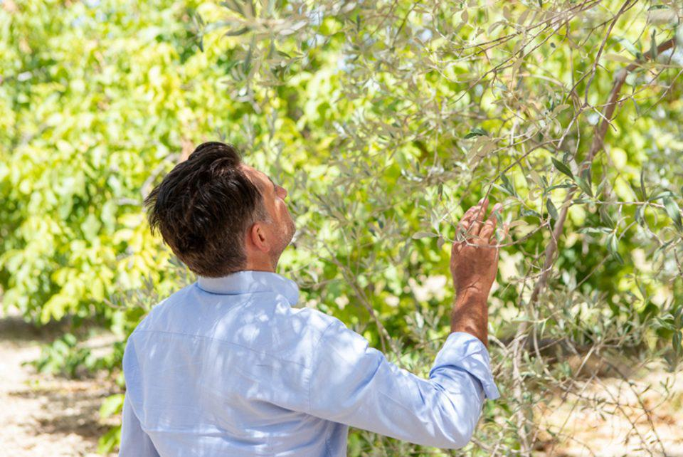 Biomimetic: Η Ελληνική start-up ανάμεσα στους φιναλίστ