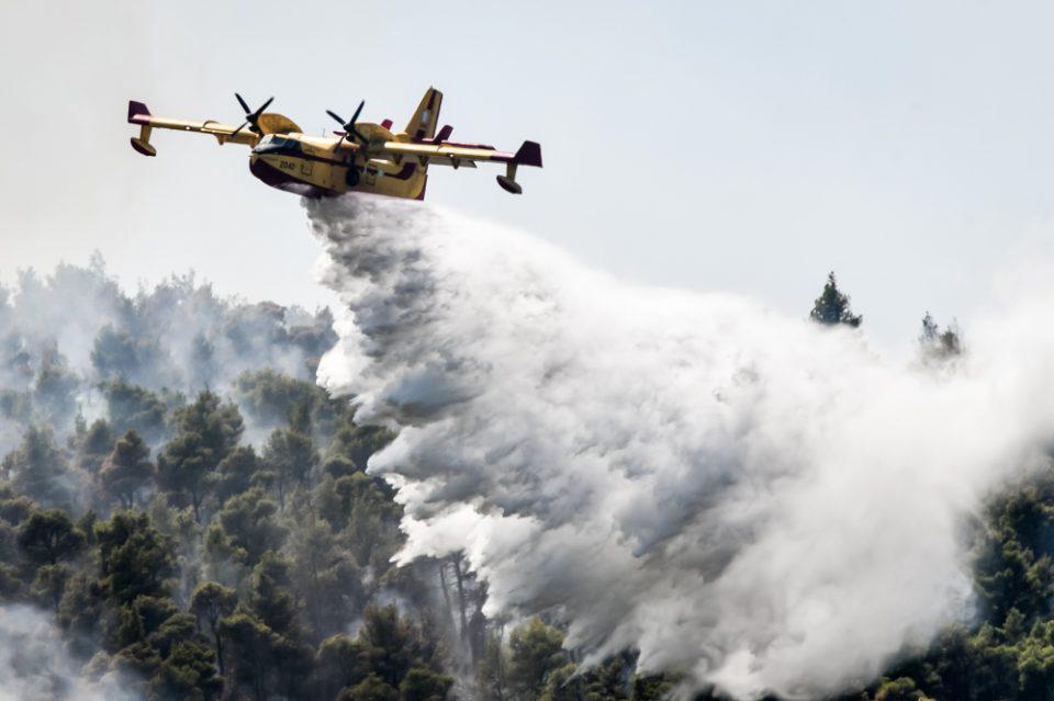 Αργολίδα: Μεγάλη φωτιά στην περιοχή Άνω Βουνά – Επιχειρούν και εναέρια μέσα