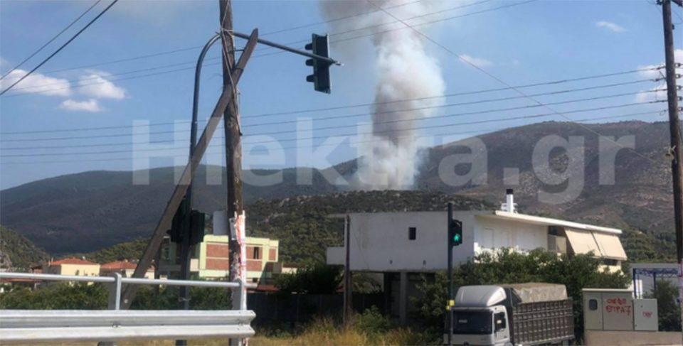 Φωτιά στην Κορινθία: Φλέγεται δάσος με πεύκα στο Κατακάλι