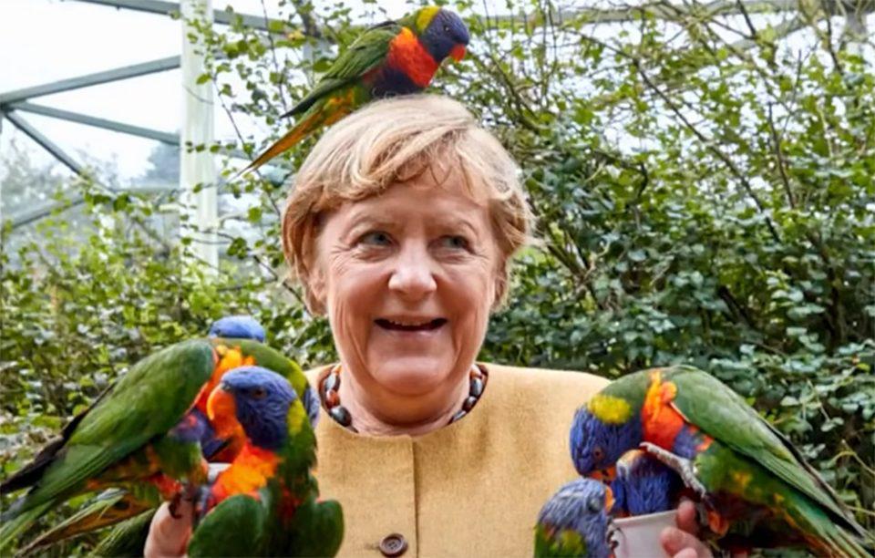 Viral η… επεισοδιακή «συνάντηση» της Μέρκελ με παπαγάλους [εικόνα]